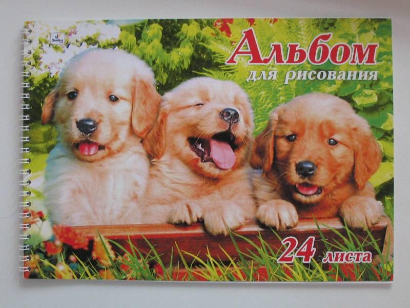 Иллюстрация 1 из 5 для Альбом для рисования 24 листа (АП24385) Три щенка | Лабиринт - канцтовы. Источник: Юлия1978