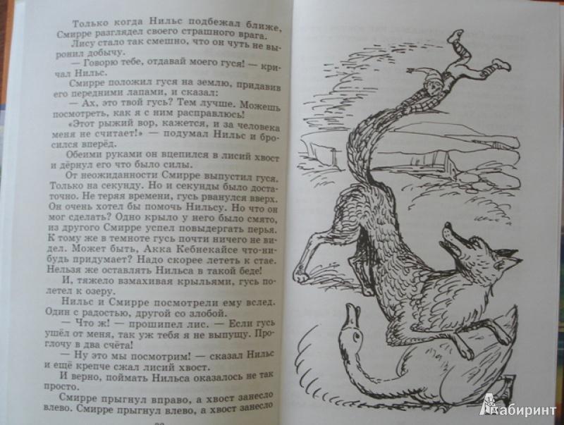 впервые раскраска нильса из сказки чудесное путешествие нильса с дикими гусями бесплатно широкоформатные обои