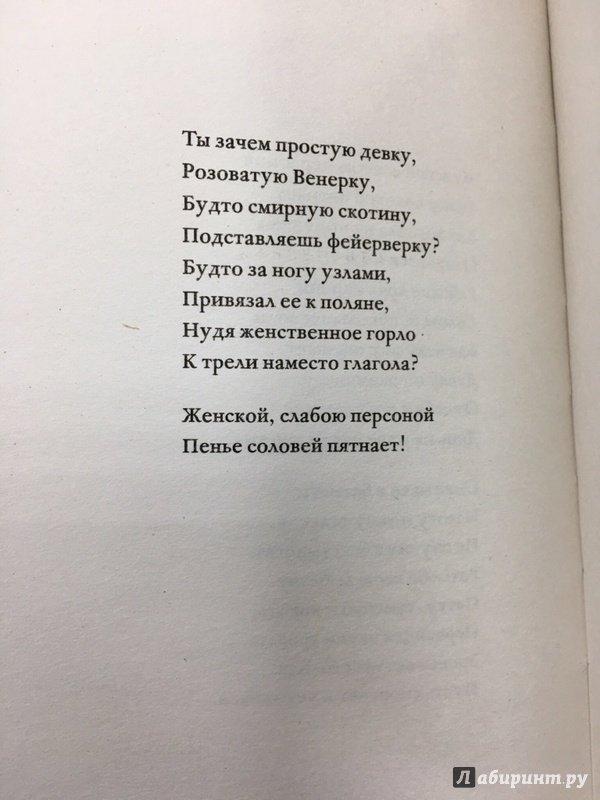 Иллюстрация 16 из 22 для Против лирики - Мария Степанова | Лабиринт - книги. Источник: Lina