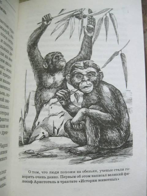 Иллюстрация 12 из 12 для Тайны происхождения человека - Валерий Воскобойников | Лабиринт - книги. Источник: NINANI