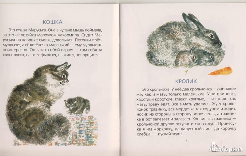 Рассказы чарушина с иллюстрациями