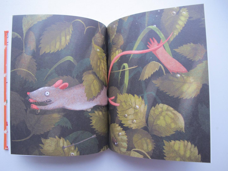 Иллюстрация 42 из 56 для Добывайки в поле - Мэри Нортон   Лабиринт - книги. Источник: Лагунова  Екатерина Сергеевна