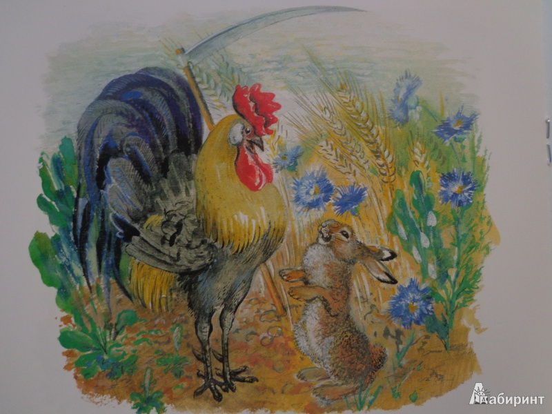 Иллюстрация 40 из 51 для Лиса и заяц - Евгений Чарушин | Лабиринт - книги. Источник: Дербилова  Людмила Владимировна