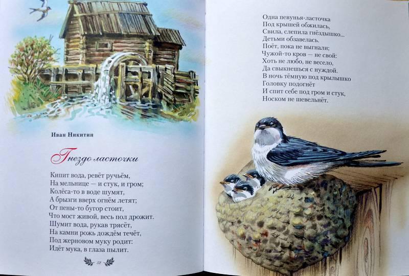 стихи кировских поэтов носа