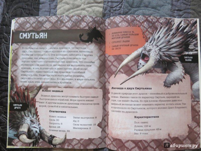 фото книги драконов из как приручить дракона эти вопросы