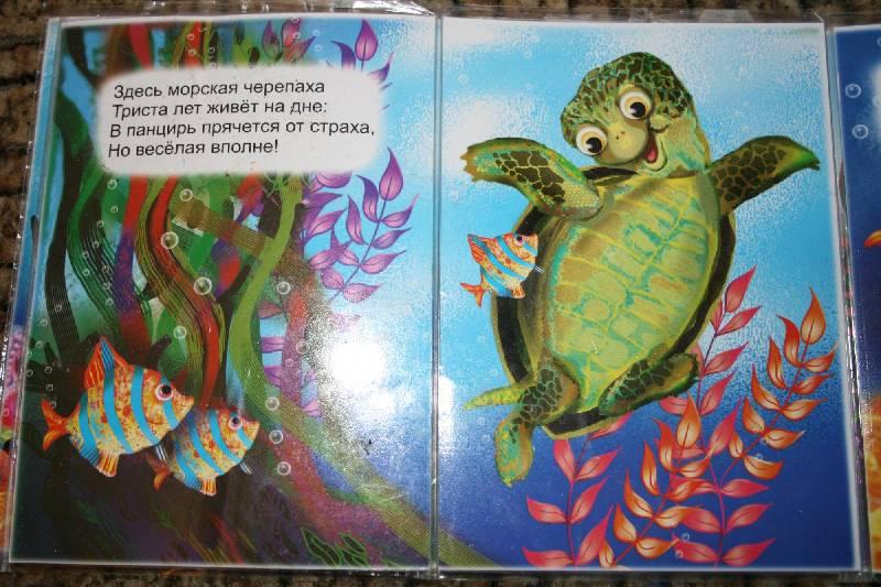 Иллюстрация 6 из 6 для Книжка-непромокашка: Морская прогулка - Сергей Тетерин | Лабиринт - книги. Источник: Счастливая мама