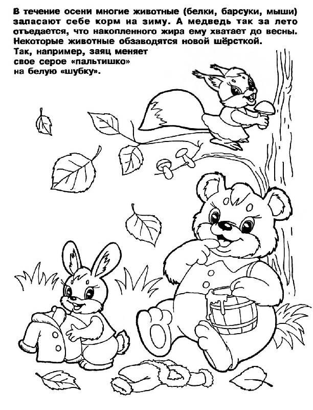 Иллюстрация 2 из 5 для Изучаем времена года: Развивающая ...