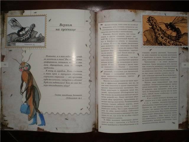 Иллюстрация 47 из 106 для Письма насекомых - Ольга Кувыкина | Лабиринт - книги. Источник: Гостья