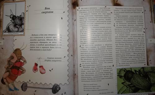 Иллюстрация 35 из 106 для Письма насекомых - Ольга Кувыкина   Лабиринт - книги. Источник: Наталья Бухтиярова
