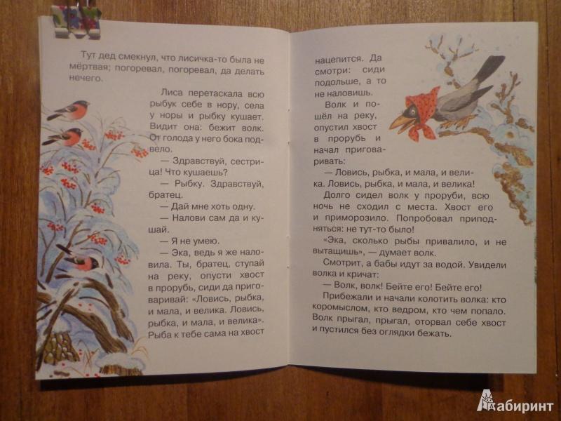 Иллюстрация 10 из 22 для Лисичка-сестричка | Лабиринт - книги. Источник: Дербилова  Людмила Владимировна