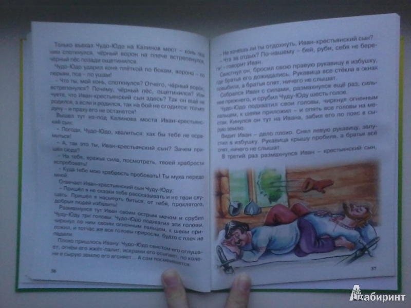 Иллюстрация 24 из 46 для Царевна-лягушка | Лабиринт - книги. Источник: Данилка
