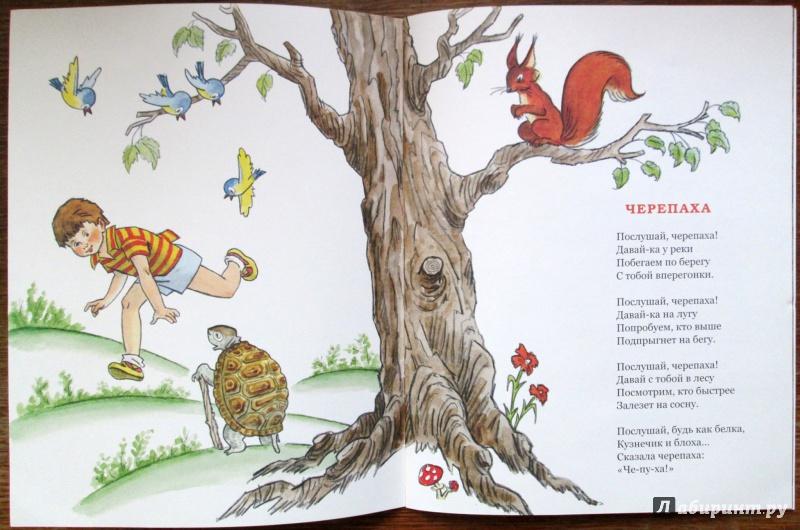 Иллюстрация 19 из 36 для Послушай, черепаха! - Михаил Кудинов | Лабиринт - книги. Источник: Зеленая шляпа