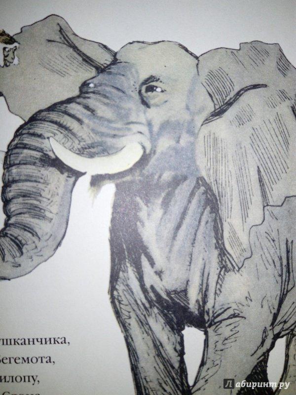Иллюстрация 31 из 31 для Мартышкино завтра - Борис Заходер | Лабиринт - книги. Источник: Лабиринт