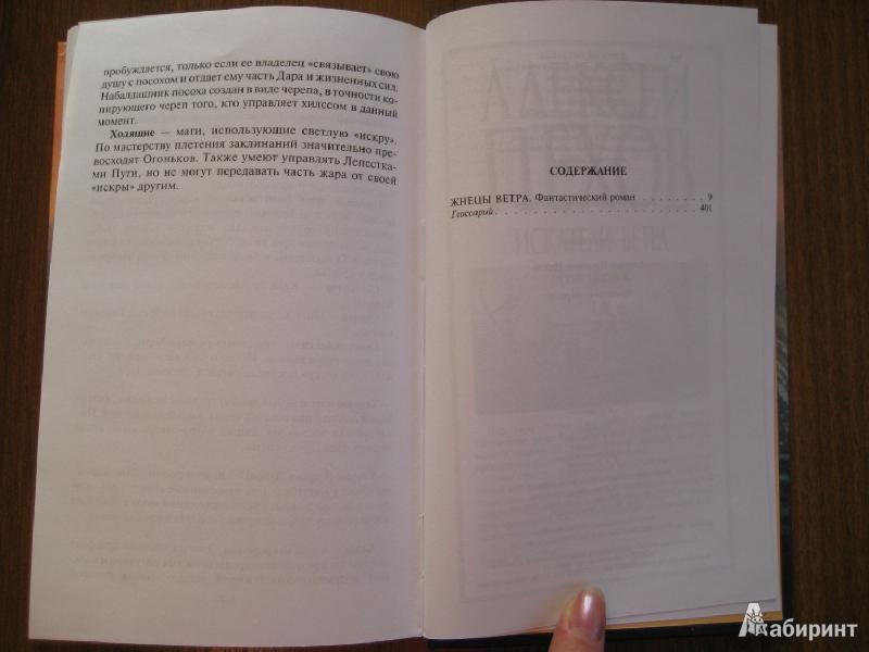 Иллюстрация 29 из 29 для Жнецы ветра - Алексей Пехов | Лабиринт - книги. Источник: Баскова  Юлия Сергеевна