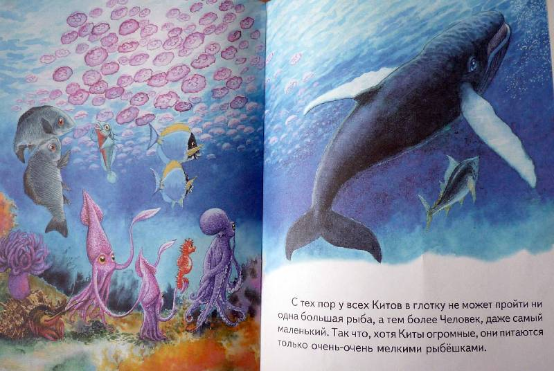 киплинг откуда у кита такая глотка картинки делаем