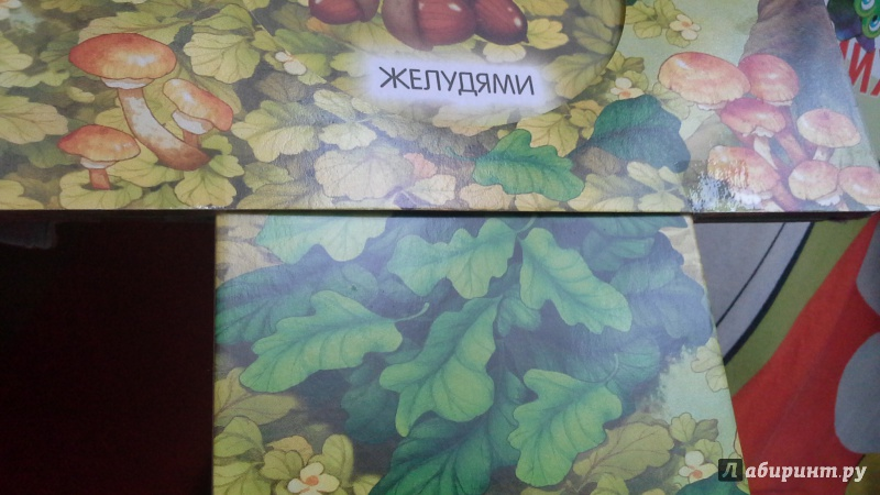 Иллюстрация 3 из 13 для Книжки-задвижки. В лесу - Гайда Лагздынь | Лабиринт - книги. Источник: Теплова  Юлия