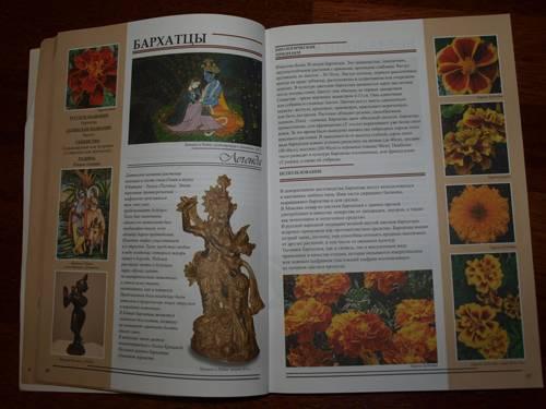 Иллюстрация 2 из 5 для Все о растениях в легендах и мифах - Рой Маккалистер   Лабиринт - книги. Источник: Наталья Бухтиярова