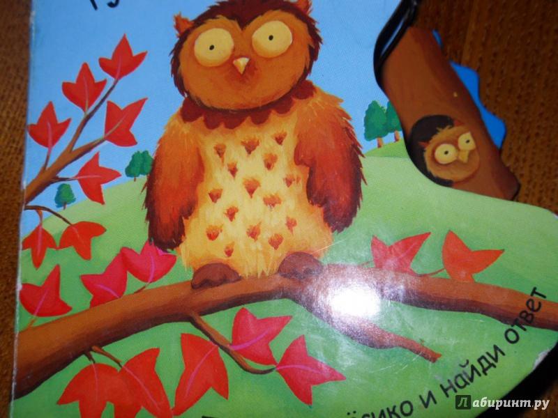 Иллюстрация 11 из 18 для Где живет сова? - Татьяна Хабарова | Лабиринт - книги. Источник: Мама чуда