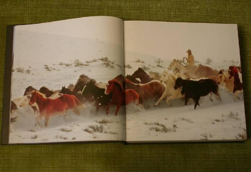 Иллюстрация 13 из 25 для Лошади. Самые лучшие фотографии | Лабиринт - книги. Источник: 3N
