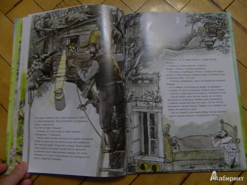 Иллюстрация 34 из 57 для Переполох в огороде - Свен Нурдквист   Лабиринт - книги. Источник: Мама Ольга