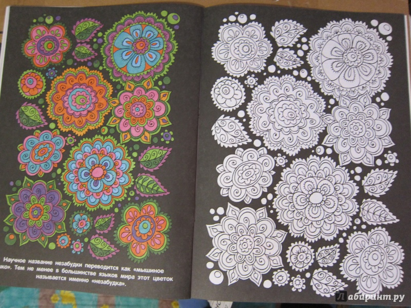 Иллюстрация 15 из 28 для Раскраска с цветными образцами ...