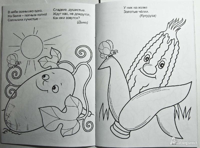 загадки и иллюстрации к ним просто
