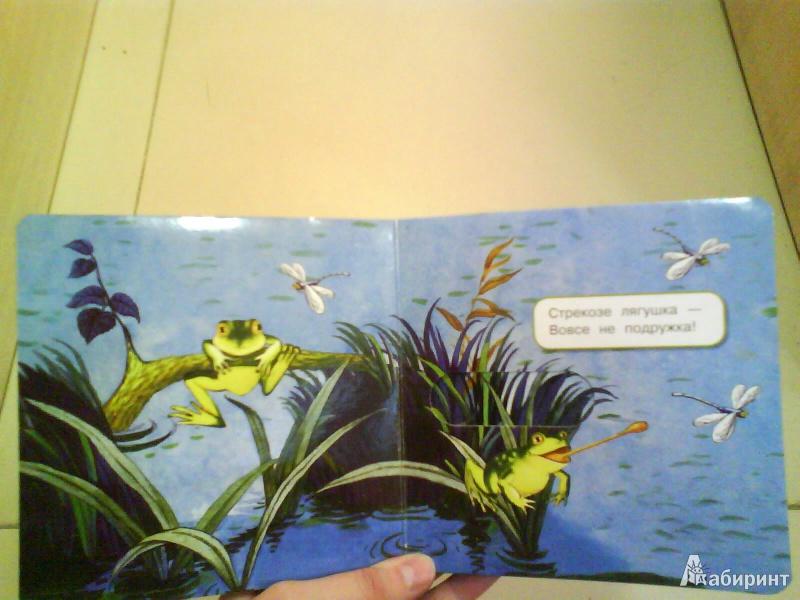 Иллюстрация 8 из 49 для Что у мишки на обед? - Юлия Шигарова | Лабиринт - книги. Источник: Мила