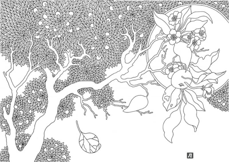 иллюстрация 16 из 40 для ветер уносит цветы книга раскраска