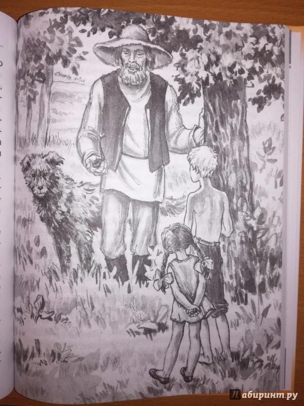Иллюстрация 6 из 20 для Чук и Гек - Аркадий Гайдар | Лабиринт - книги. Источник: Евгения Переляева