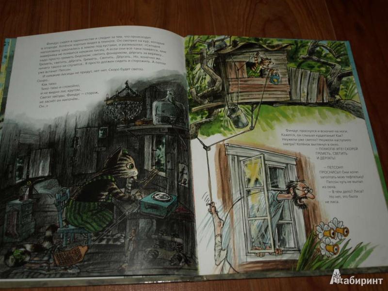 Иллюстрация 22 из 57 для Переполох в огороде - Свен Нурдквист | Лабиринт - книги. Источник: Гусева  Анна Сергеевна