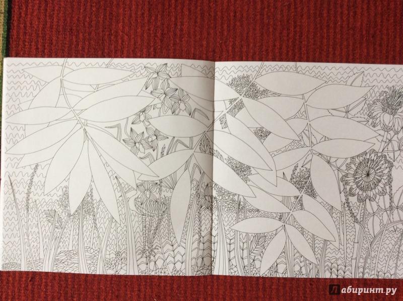 Иллюстрация 13 из 27 для Раскраска. Прятки-загадки ...