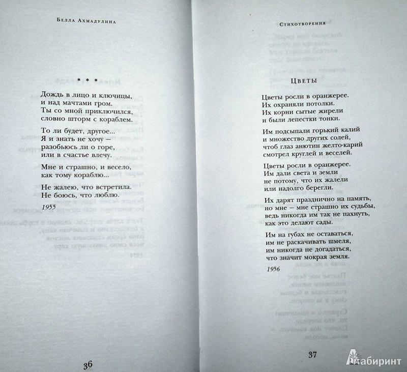 печное, стихи для беллы совместное