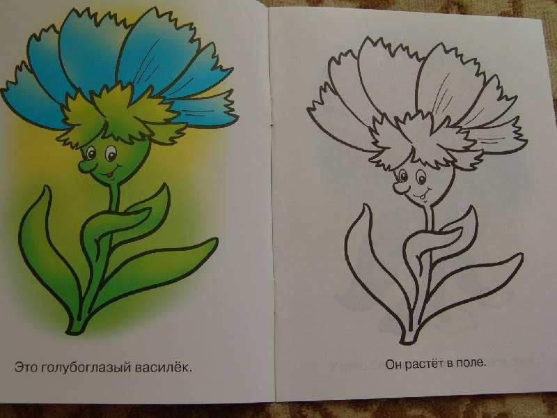 Иллюстрация 4 из 15 для Раскраска для малышей: Цветы ...
