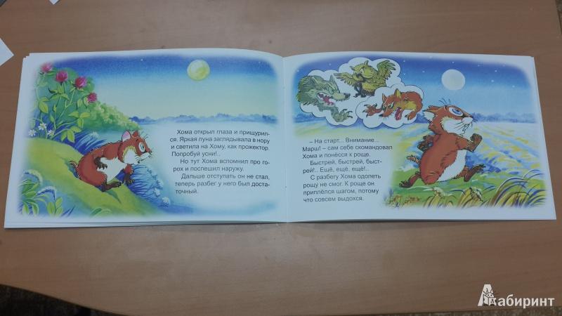 Иллюстрация 25 из 47 для Как Хома на дальнее поле за рощу ходил - Альберт Иванов | Лабиринт - книги. Источник: ИринаИ