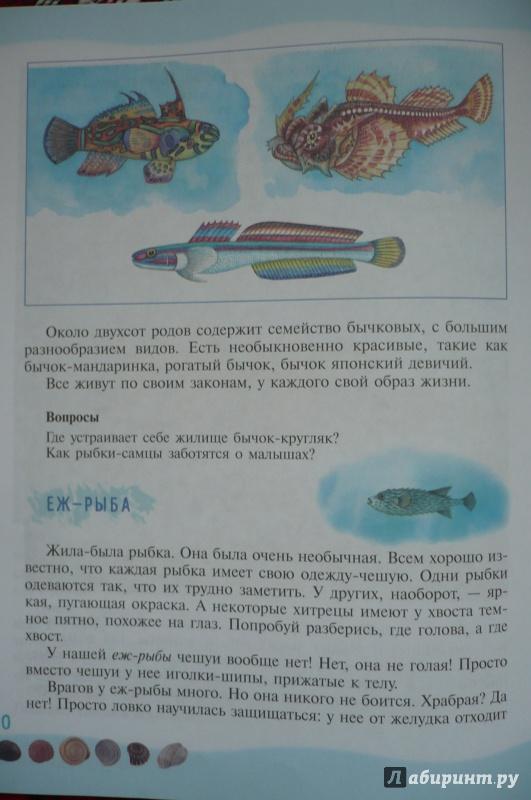 Иллюстрация 3 из 39 для Тайны морского дна: книга для чтения детям - Геннадий Целищев | Лабиринт - книги. Источник: Астанина  Олеся