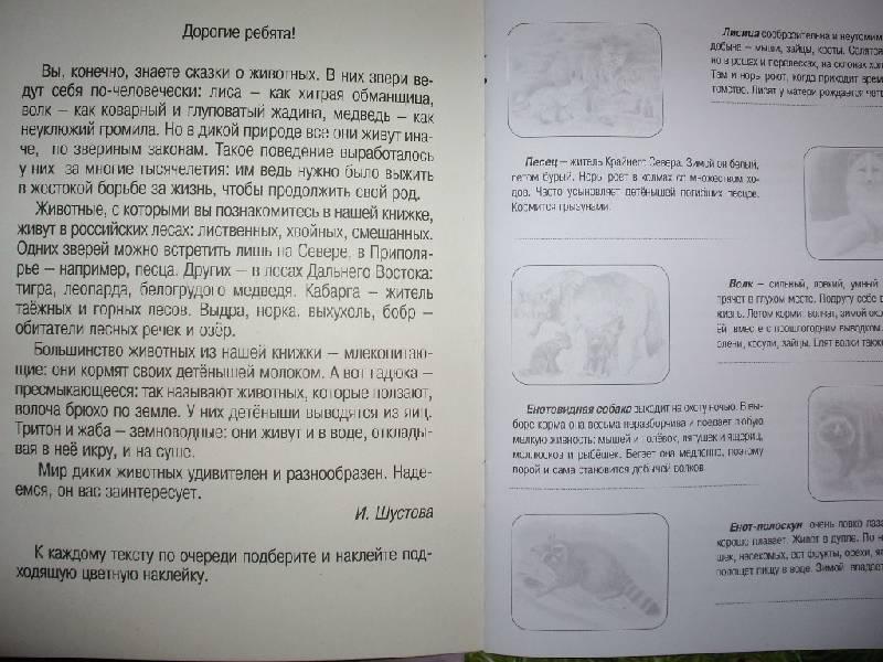 Иллюстрация 12 из 12 для Животные русского леса. Книжка с наклейками | Лабиринт - книги. Источник: Tiger.