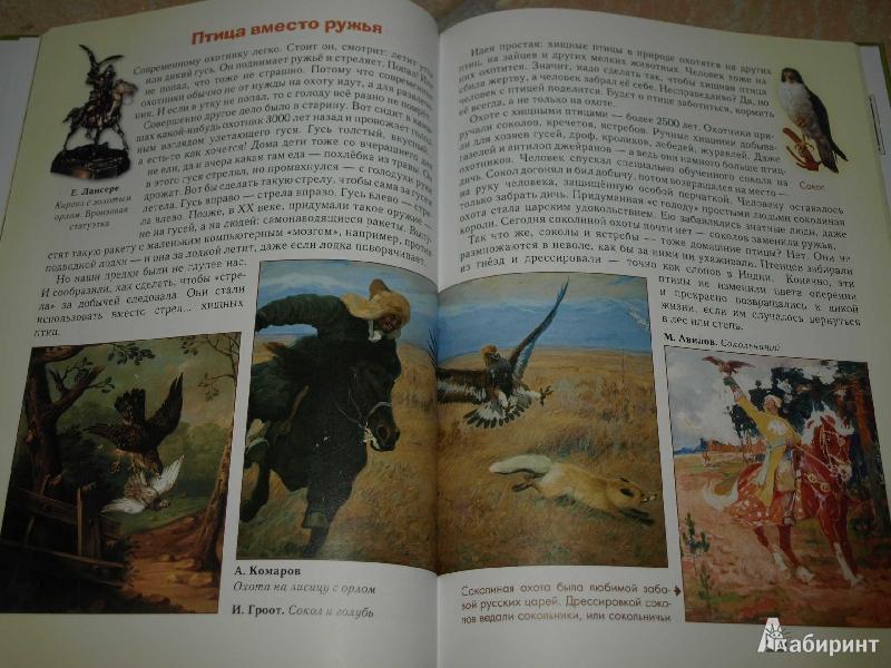Иллюстрация 26 из 52 для Домашние животные - Светлана Лаврова | Лабиринт - книги. Источник: Гусева  Анна Сергеевна