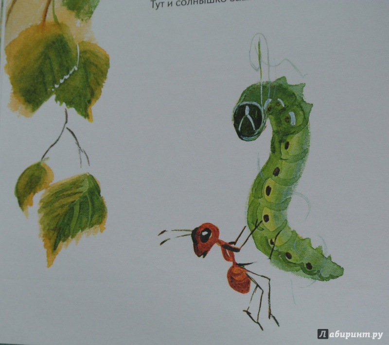 рисунок к рассказу приключения муравьишки работах