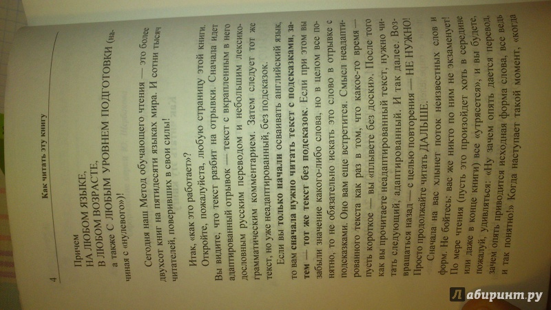 Иллюстрация 5 из 9 для Пустяковые повести = Nonsense Novels - Стивен Ликок | Лабиринт - книги. Источник: Воробьева  Анастасия