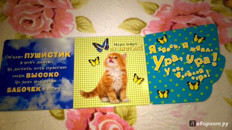 Иллюстрация 7 из 14 для Давай играть! Любопытные котята - Анжела Берлова | Лабиринт - книги. Источник: Солнышко Светка