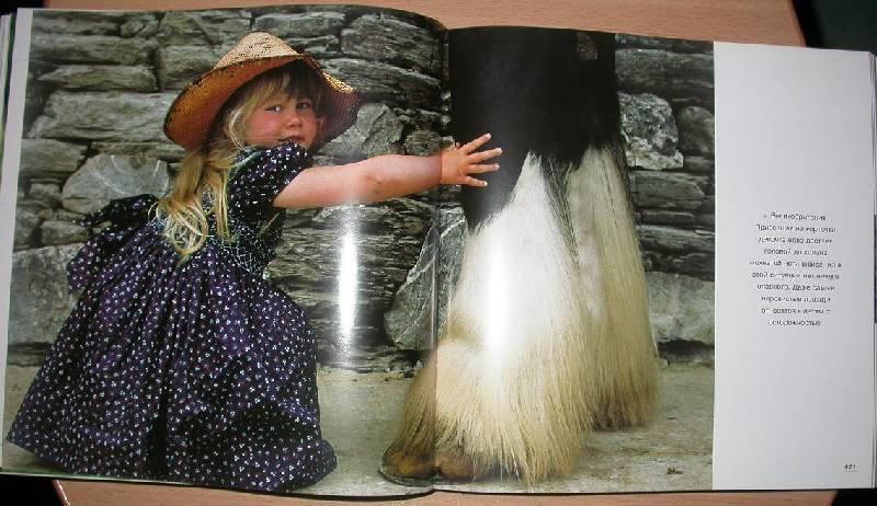 Иллюстрация 24 из 25 для Лошади. Самые лучшие фотографии | Лабиринт - книги. Источник: 3N
