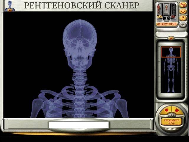 Иллюстрация 11 из 33 для Мое тело. Анатомия и физиология (CDpc) | Лабиринт - софт. Источник: Кузнецова  Лариса Юрьевна