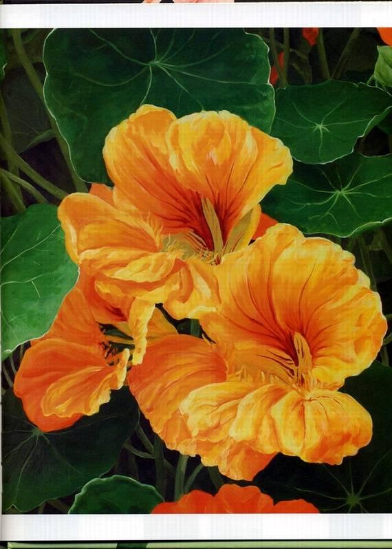Иллюстрация 5 из 20 для Акриловая живопись. Рисуем цветы - Лекси Санделл | Лабиринт - книги. Источник: * Ольга *