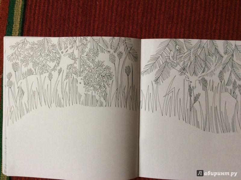 Иллюстрация 16 из 20 для Раскраска. Прятки-загадки ...