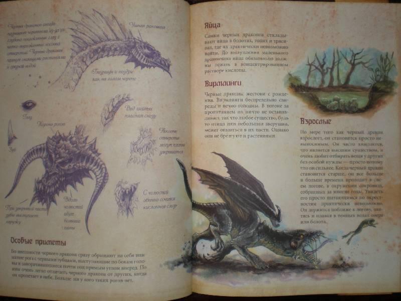 энциклопедия о драконах с картинками сады, которым так