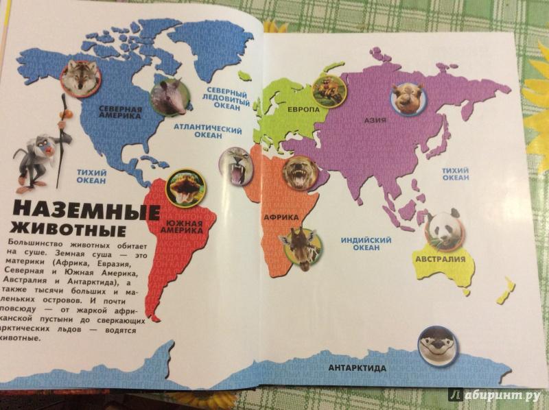 Иллюстрация 8 из 16 для Большая энциклопедия для любознательных - Feldman, Wilsdon   Лабиринт - книги. Источник: Коденцова  Ольга