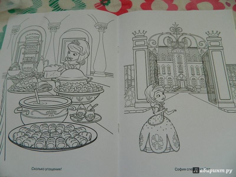 Иллюстрация 1 из 5 для Волшебная раскраска. Принцесса ...