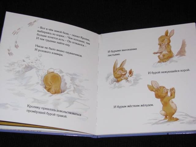 Иллюстрация 23 из 30 для Кусочек зимы - Пол Стюарт   Лабиринт - книги. Источник: Nemertona