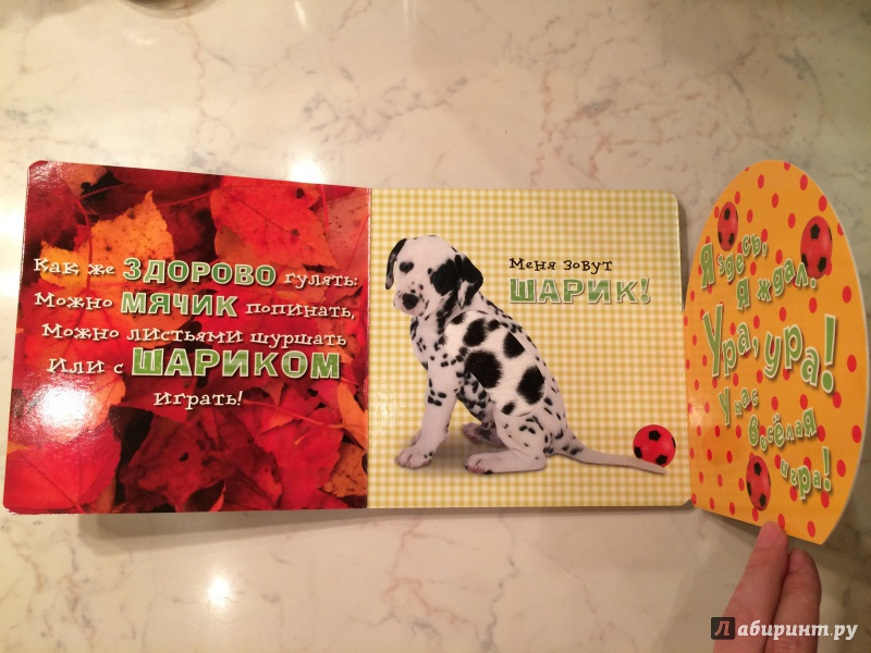 Иллюстрация 6 из 23 для Давай играть! Веселые щенки - Анжела Берлова   Лабиринт - книги. Источник: Денисенко  Алевтина