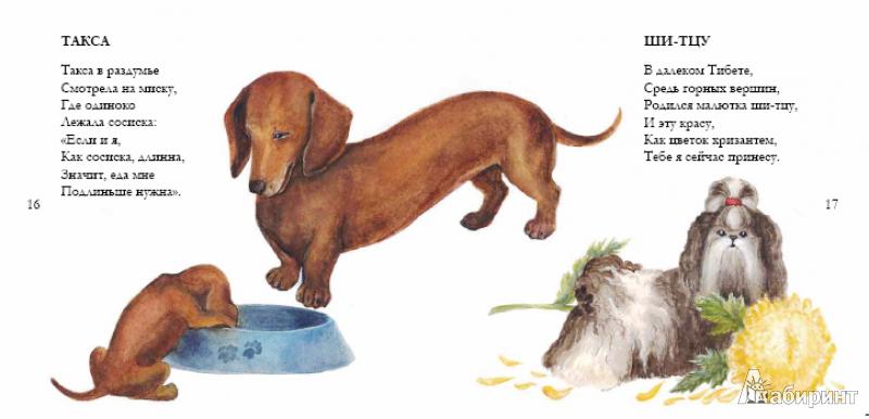 Иллюстрация 7 из 22 для Собачьи мечты - Игорь Карде | Лабиринт - книги. Источник: !!!